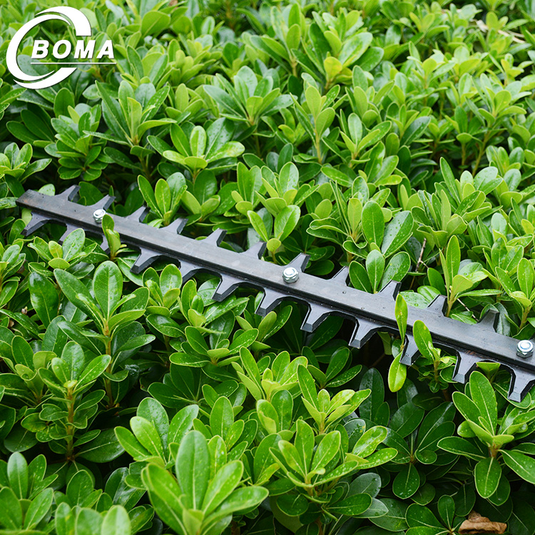 Manufacturer Supply BOMA Brand East Garden Tools Petrol Tea Pruning Machine with Double Blades for Shrub Pruning