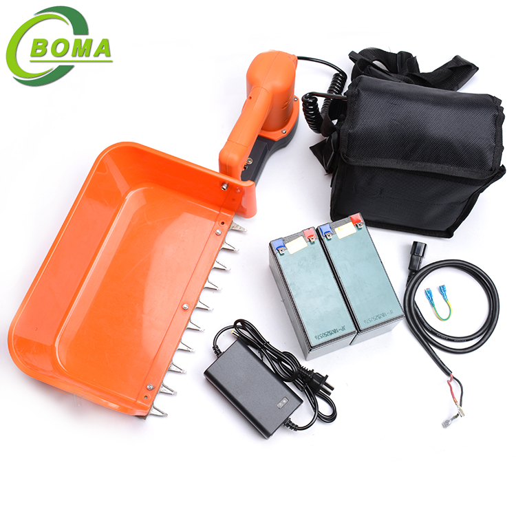 BOMA Rechargeable New Green Tea Collection Machine for Cutting Rose