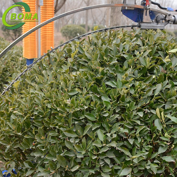 Battery Powered Automatic Round Shrub Trimming Machine with Curved Blades for Boxwoods